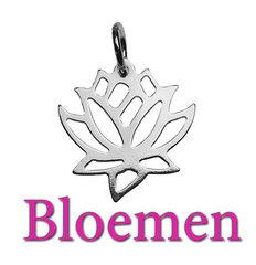 Bloemen Hangers, Bedels